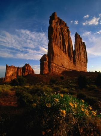 Courthouse Towers with Wildflowers in Foreground, Arches National Park, USA