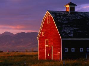Spring Sunshine on a Barn in Montana, Montana, USA by Carol Polich