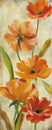Flower Dance II