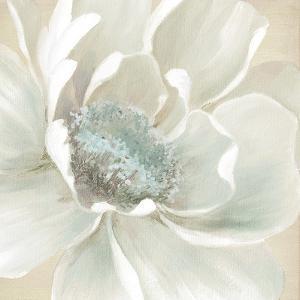 Winter Blooms I by Carol Robinson
