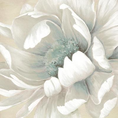 Winter Blooms II