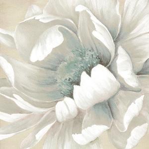 Winter Blooms II by Carol Robinson