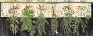Herbs on Pegs Black Crop by Carol Rowan