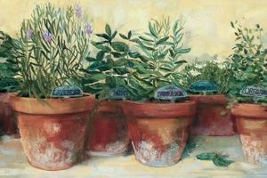 Potted Herbs I by Carol Rowan