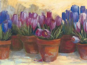 Spring Crocus by Carol Rowan