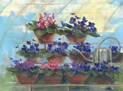 Violets by Carol Rowan