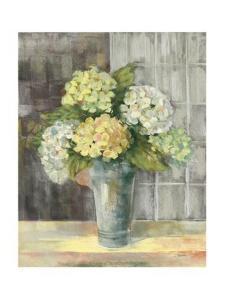 Yellow Hydrangea Gray by Carol Rowan