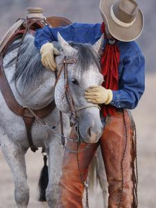 Cowboy Leading and Stroking His Horse, Flitner Ranch, Shell, Wyoming, USA by Carol Walker