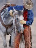 Gray Andalusian Stallion, Cantering in Snow, Longmont, Colorado, USA-Carol Walker-Photographic Print