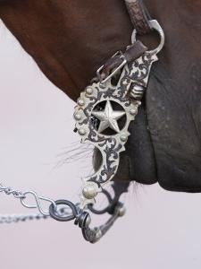 Fancy Silver Bit on Horse Bridle of Cowboy, Flitner Ranch, Shell, Wyoming, USA by Carol Walker