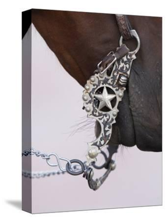 Fancy Silver Bit on Horse Bridle of Cowboy, Flitner Ranch, Shell, Wyoming, USA