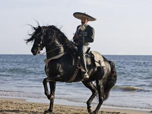 Horseman in Traditional Dress Riding Black Andalusian Stallion on Beach, Ojai, California, USA by Carol Walker