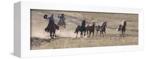 Two Cowboys Herding Horses, Flitner Ranch, Shell, Wyoming, USA by Carol Walker