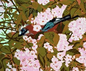 Jay in the Cherry Tree by Carol Walklin