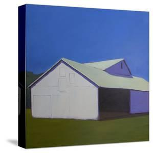 Lonely Barn by Carol Young