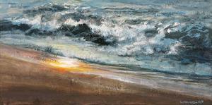Shoreline study 02015 by Carole Malcolm