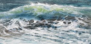Shoreline study 08916 by Carole Malcolm