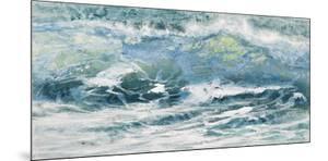 Shoreline study 10116 by Carole Malcolm