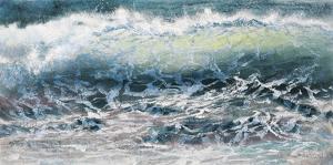 Shoreline study 11716 by Carole Malcolm