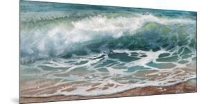 Shoreline study 17016 by Carole Malcolm