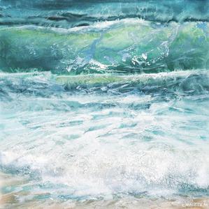 Shoreline study 19816 by Carole Malcolm