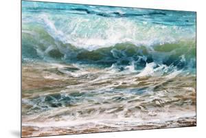 Shoreline study 20216 by Carole Malcolm