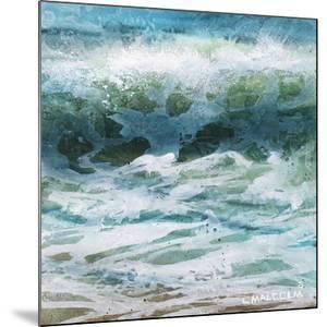 Shoreline study 20416 by Carole Malcolm