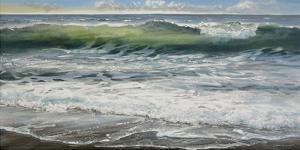 Shoreline study 8 by Carole Malcolm