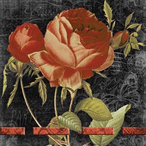 Vintage Floral 2 by Carole Stevens