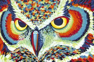 Bright Eyes by Carolee Vitaletti