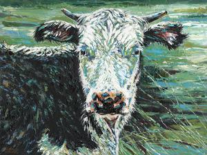 Marshland Cow I by Carolee Vitaletti