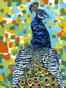 Plumed Peacock II by Carolee Vitaletti