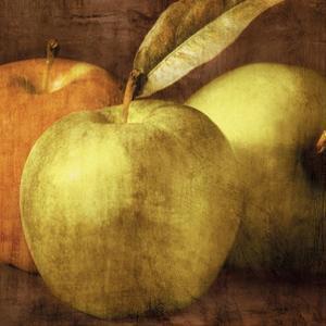 Apples by Caroline Kelly