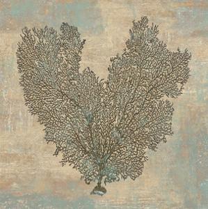 Aqua Fan Coral by Caroline Kelly