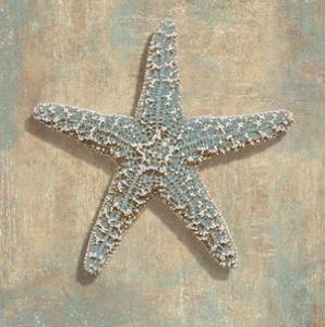 Aqua Starfish by Caroline Kelly