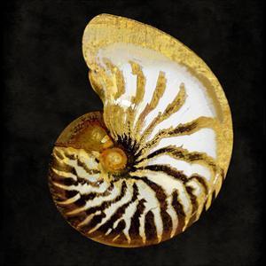 Golden Ocean Gems II by Caroline Kelly