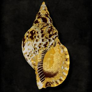 Golden Ocean Gems III by Caroline Kelly