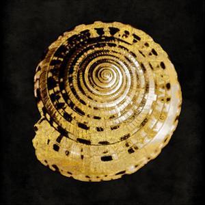 Golden Ocean Gems IV by Caroline Kelly