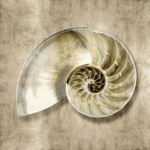 Golden Sea Life IV by Caroline Kelly
