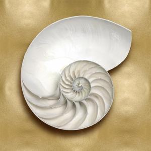Ocean Gem on Gold II by Caroline Kelly