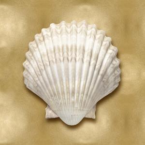 Ocean Gem on Gold IV by Caroline Kelly