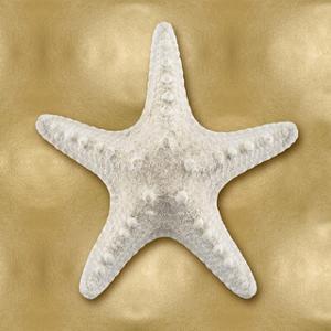 Ocean Gem on Gold VI by Caroline Kelly