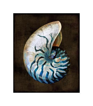 Ocean Treasure IV