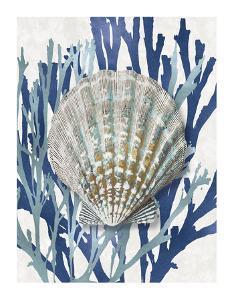 Shell Coral Aqua Blue IV by Caroline Kelly