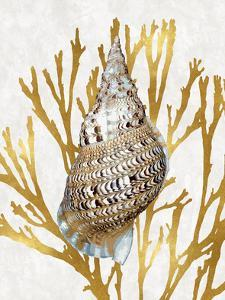 Shell Coral Gold I by Caroline Kelly