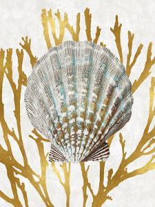 Shell Coral Gold IV by Caroline Kelly