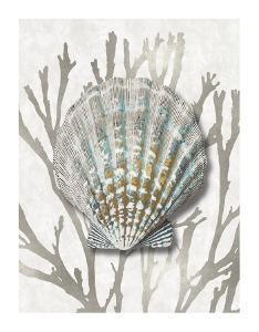 Shell Coral Silver IV by Caroline Kelly
