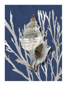 Shell Coral Silver on Blue III by Caroline Kelly
