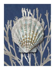 Shell Coral Silver on Blue IV by Caroline Kelly