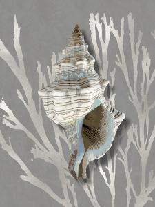 Shell Coral Silver on Gray III by Caroline Kelly